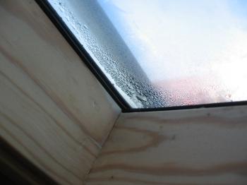 Tipps und Infos zur optimalen Luftfeuchtigkeit im Wohnraum